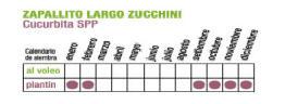 C ZUCCHINI - Plantas Faitful