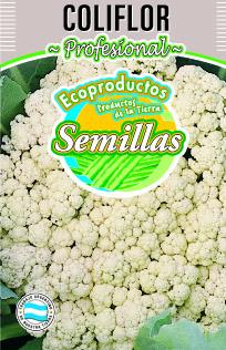 Semillas coliflor