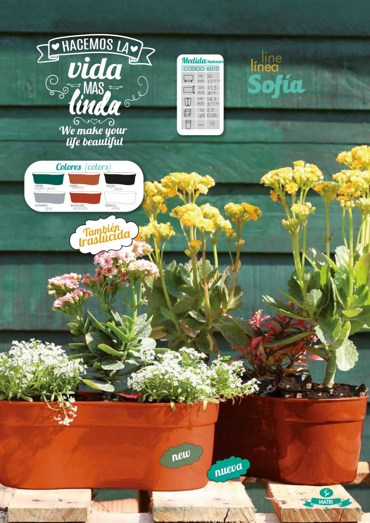 Catalogo Digital page 0003 - Plantas Faitful