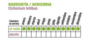 C RADICHETA - Plantas Faitful