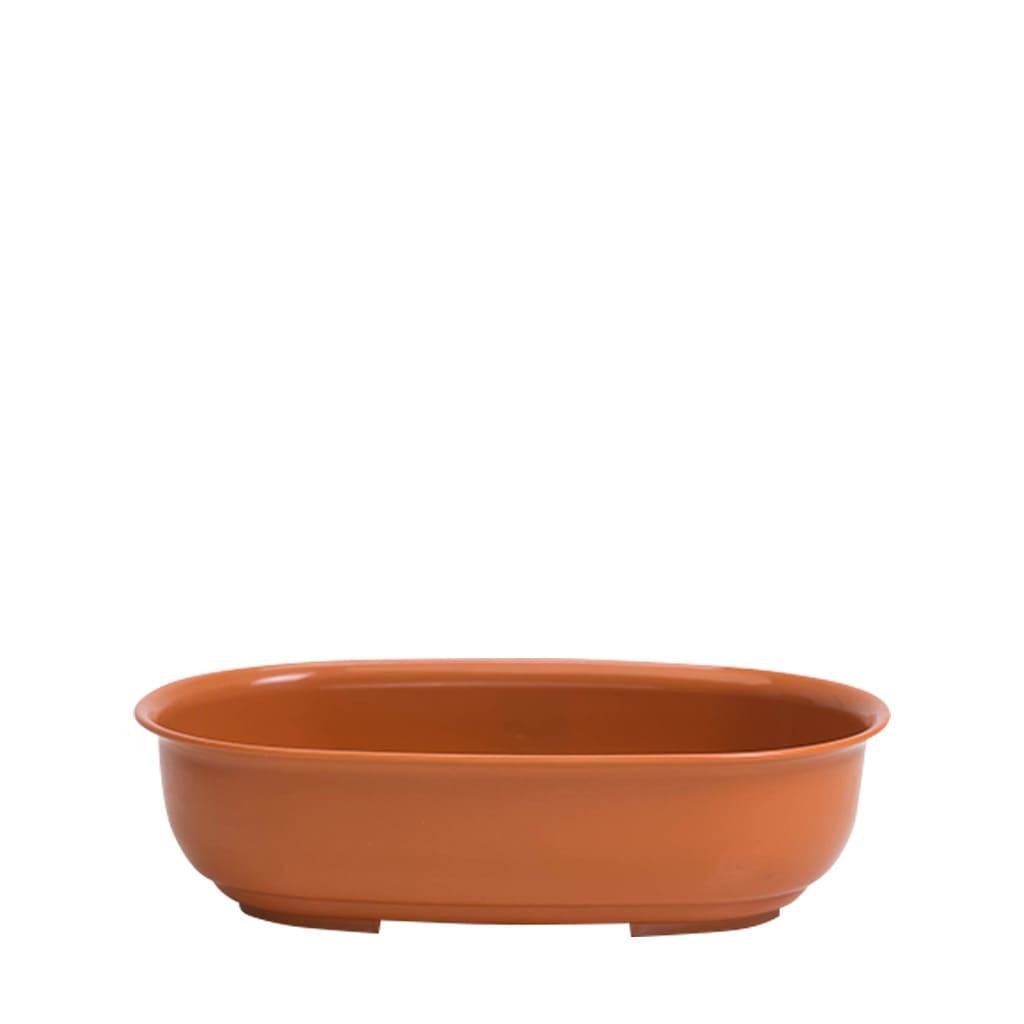 Plantas Faitful Macetas Plasticas TA Bonsai Ovalado - Plantas Faitful