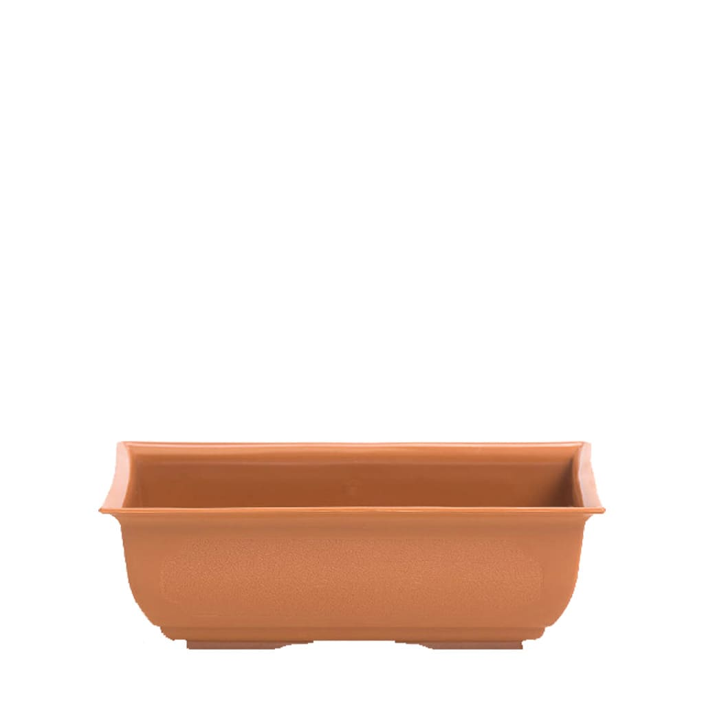 Plantas Faitful Macetas Plasticas TA Bonsai Rectangular - Plantas Faitful