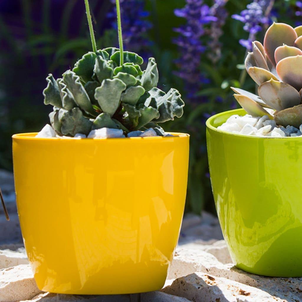 Plantas Faitful Macetas Plasticas TA Premium Redonda 3 - Plantas Faitful