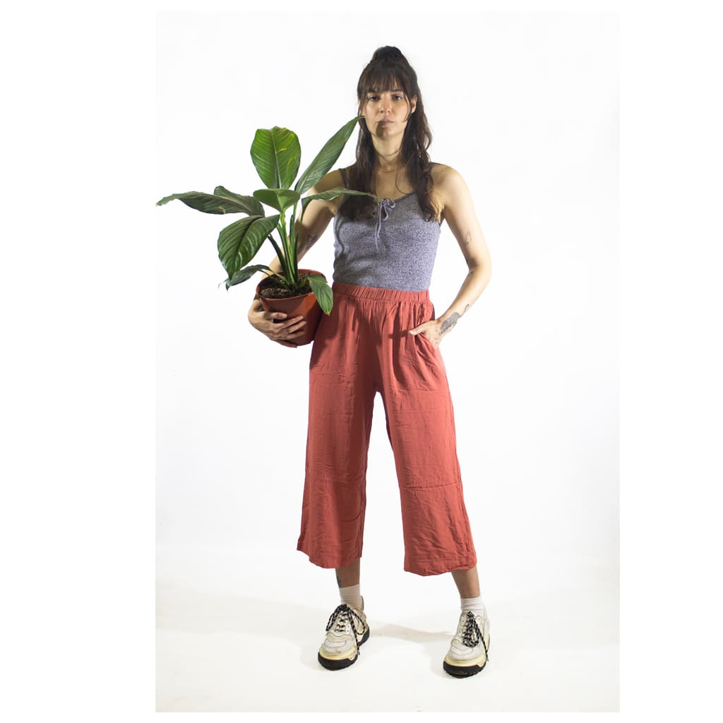 Plantas Faitful Plantas Interior Spatiphyllum M19 Dimension - Plantas Faitful