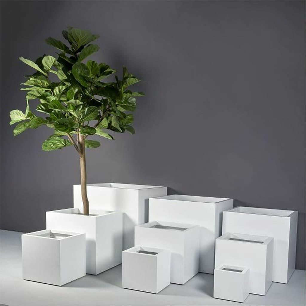 Plantas Faitful Macetas Rotomoldeado Cubo. 1 - Plantas Faitful