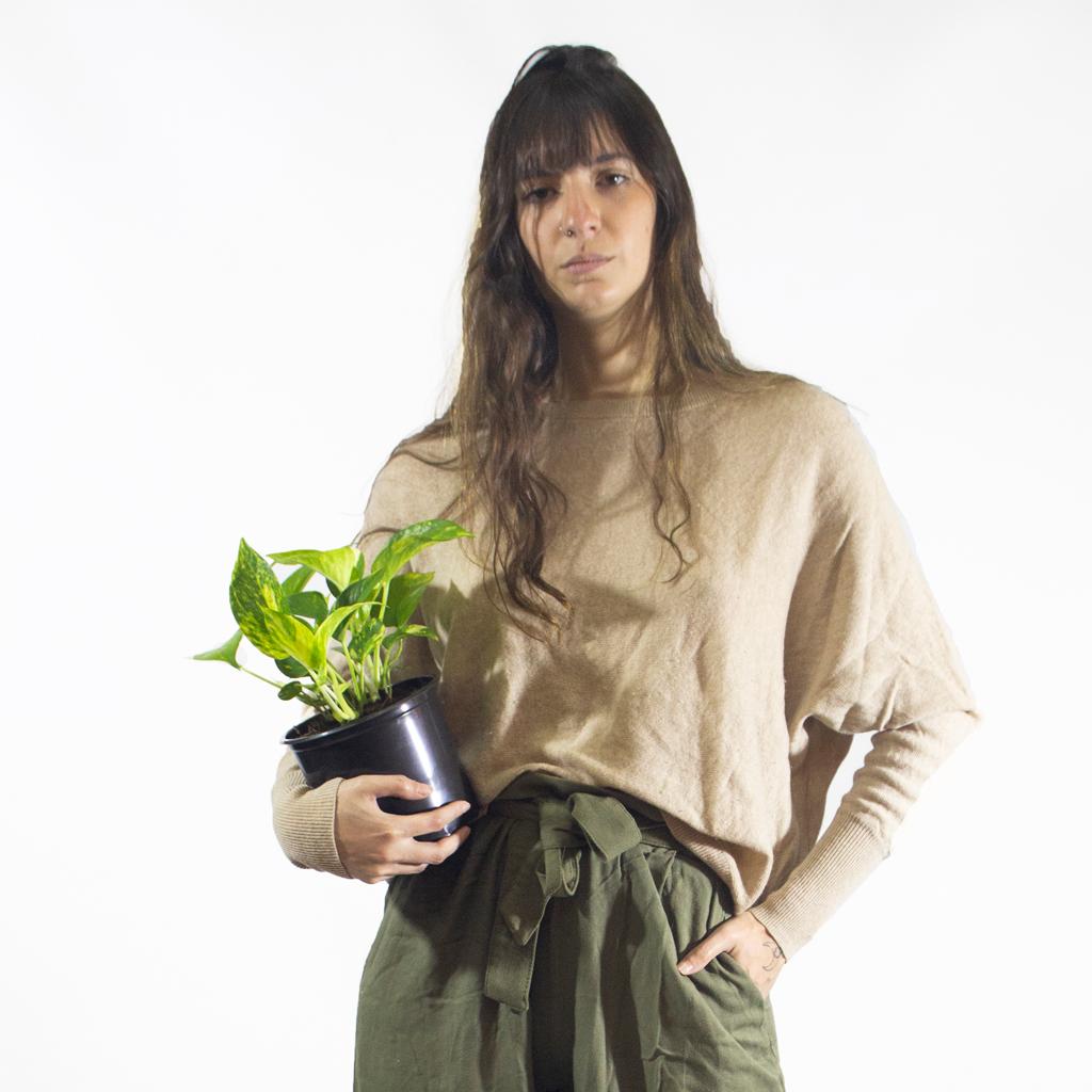 Plantas Faitful Plantas Interior Potus M14 Dimension 1 - Plantas Faitful