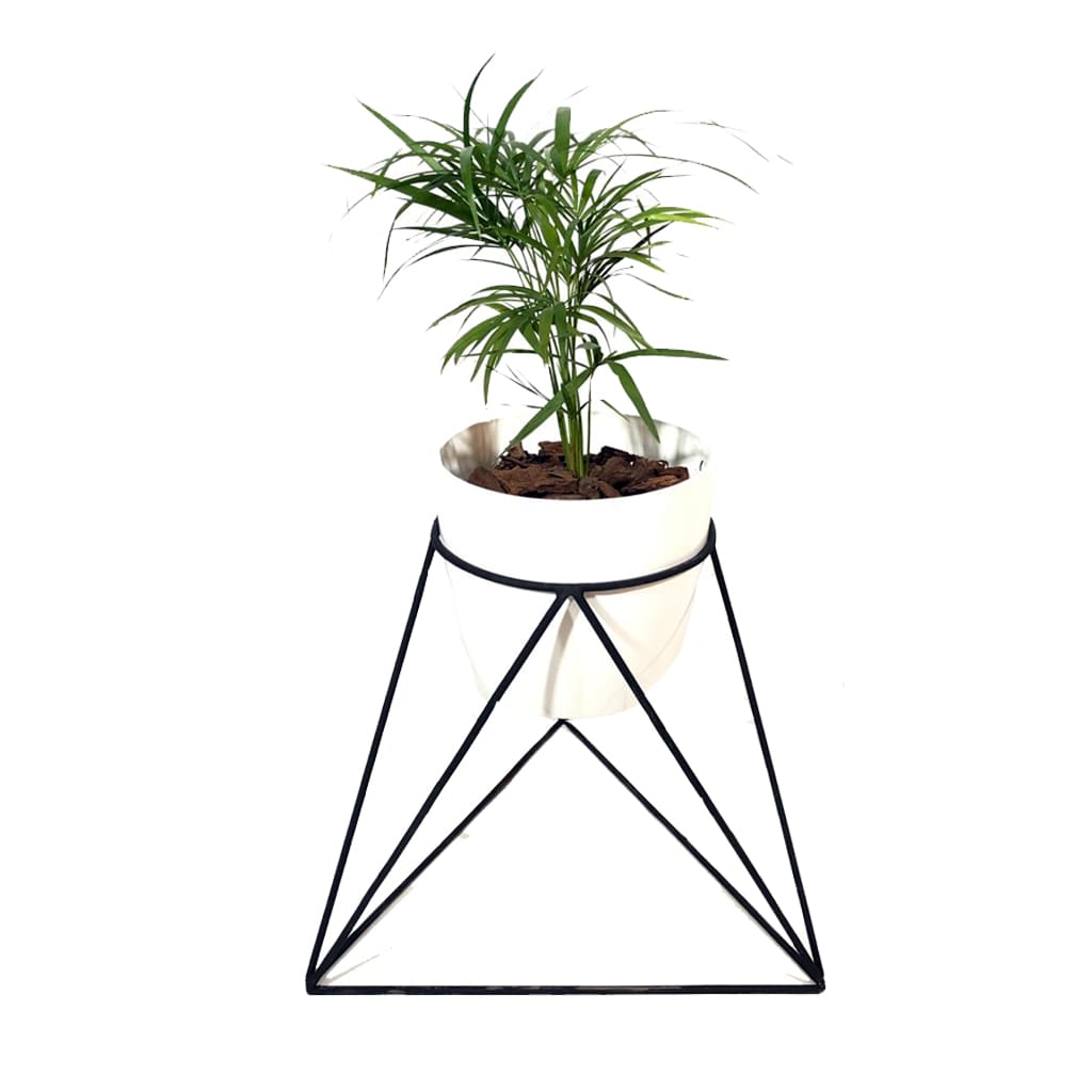 Plantas Faitful Portamacetas Octogonal Hierro 1 - Plantas Faitful