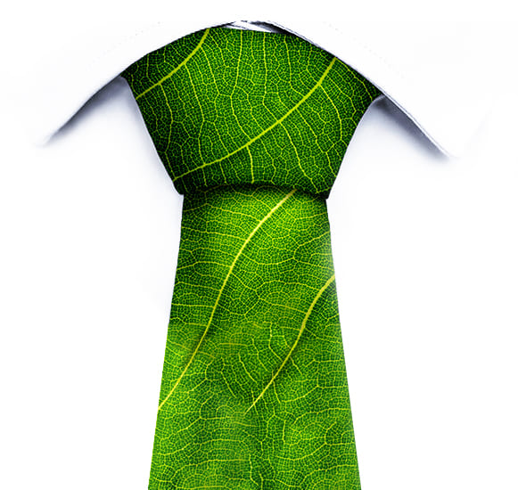 Plantas-Faitfull-Empresa-Img1e