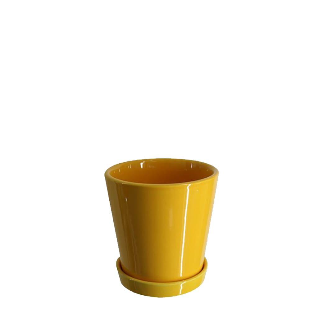 Plantas Faitful Macetas Ceramica Conica Amarilla - Plantas Faitful