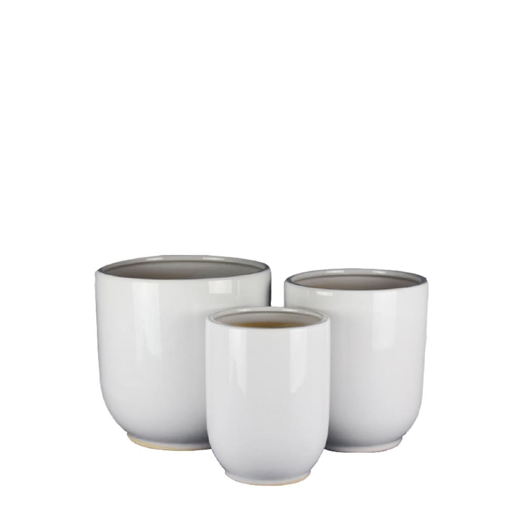 Plantas Faitful Macetas Ceramica Saltena Blanco - Plantas Faitful