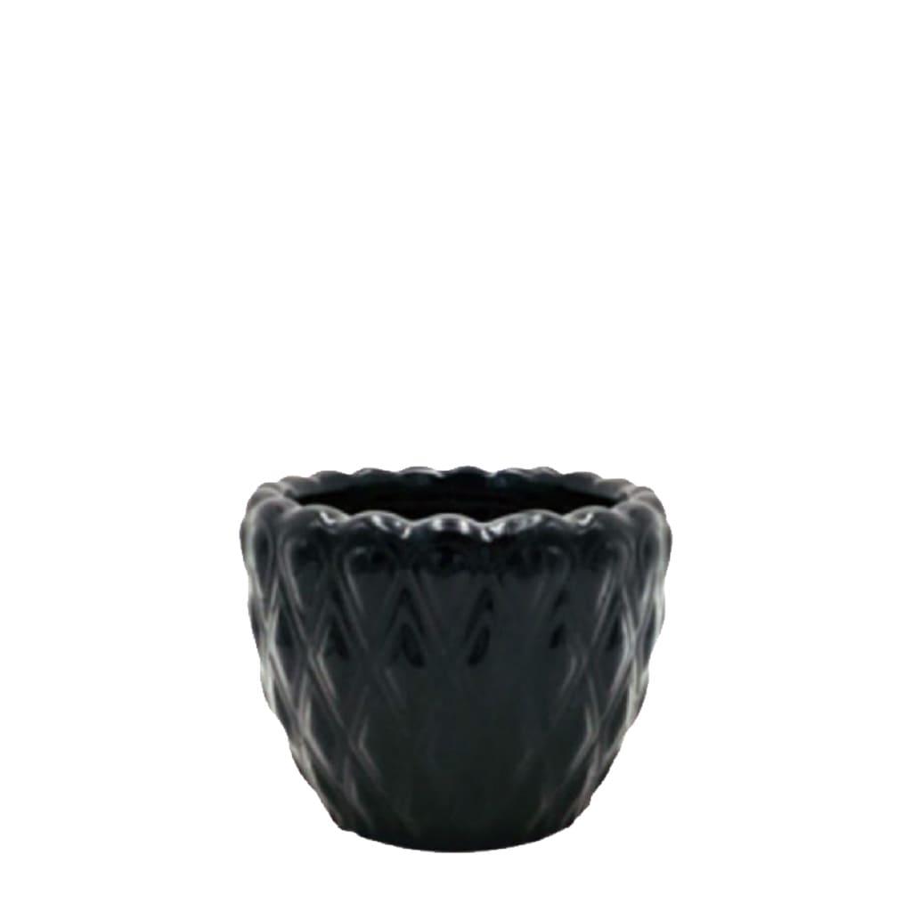 Plantas Faitful Macetas Ceramica Salvador Negro - Plantas Faitful