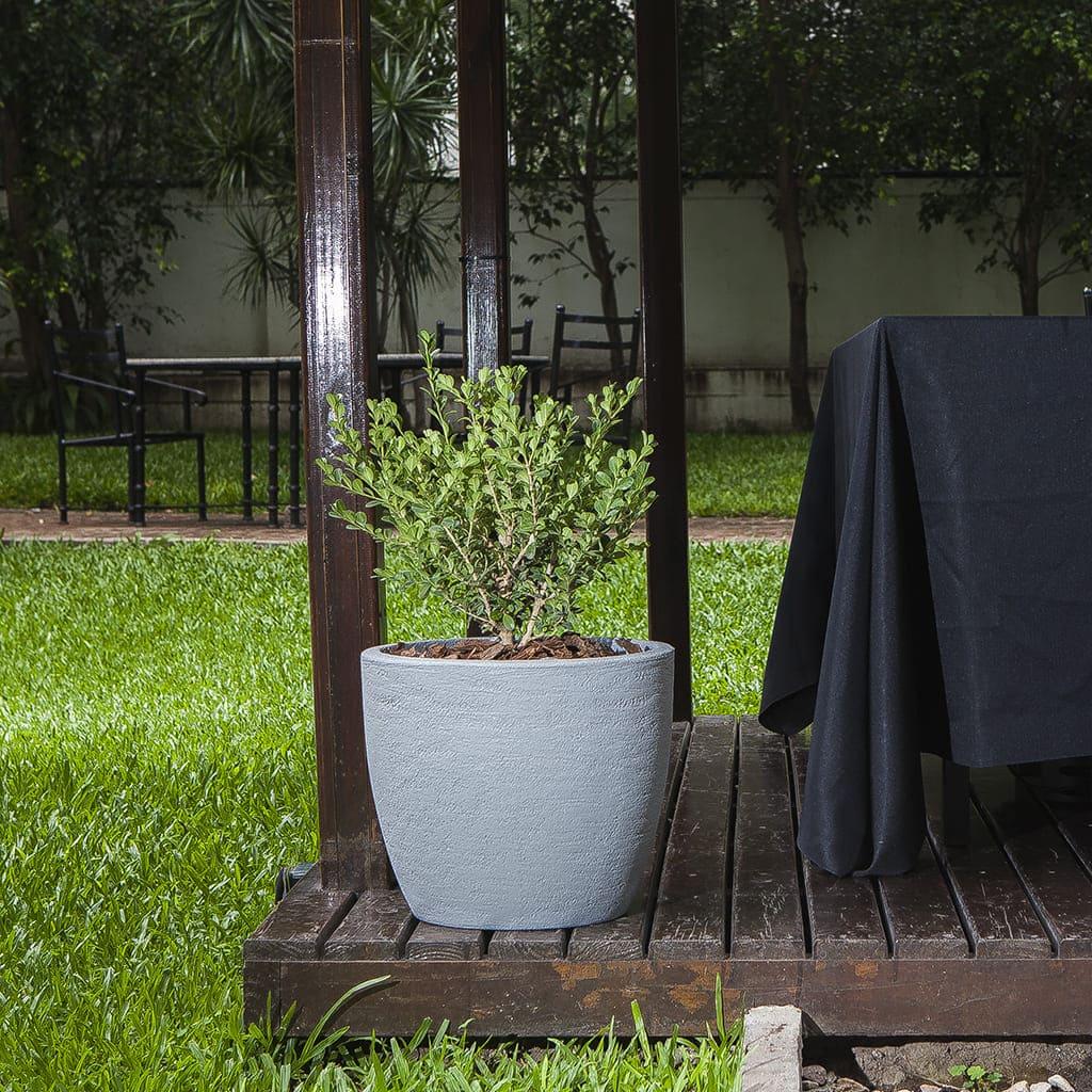 Plantas Faitful Combos Exterior Buxus Andina Rustica Rotomoldeada - Plantas Faitful